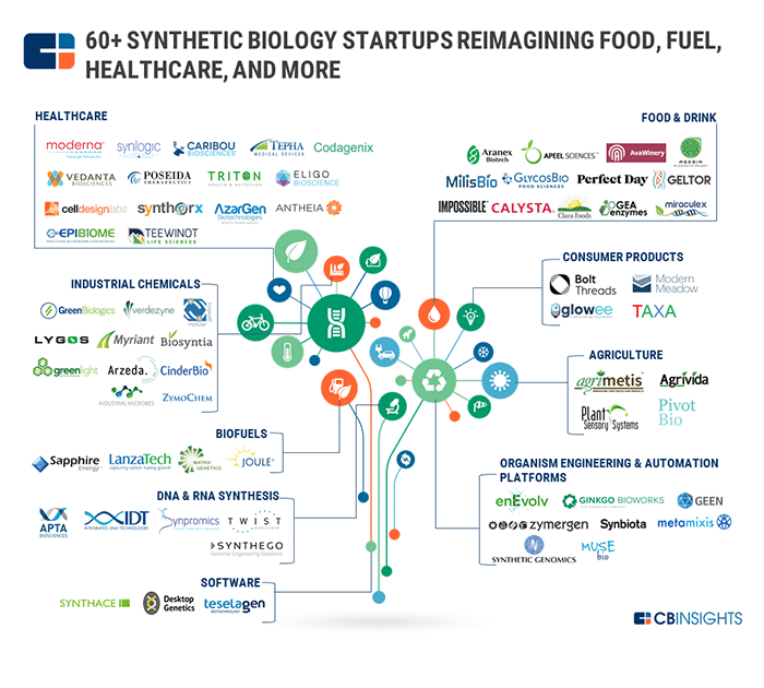cb insights 60+ synthetic bio startups reimagining food, fuel and healthcare